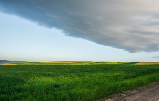 10 Acres of Beautiful Prairie Land in Benton County, WA